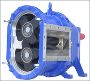picture detail rotary low pump